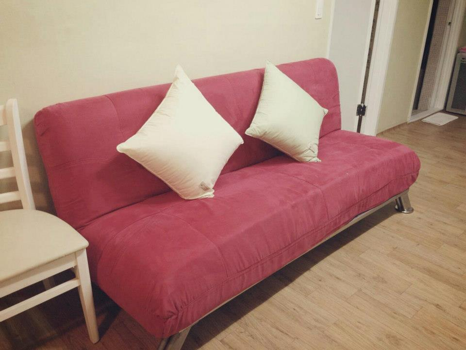 Living room - extra sofa bed