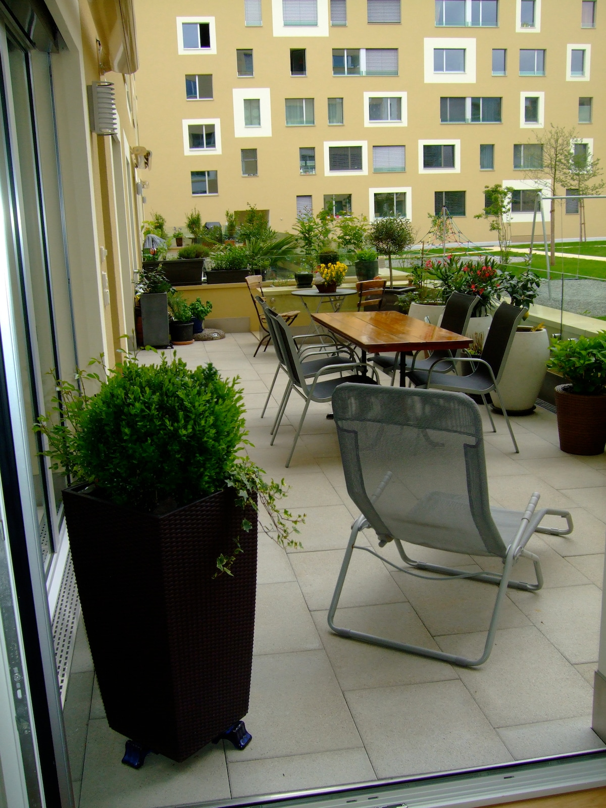 our beautiful terrace