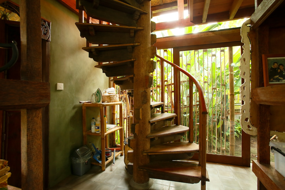 Light streams into the house from all directions; open open open plan with garden all around.
