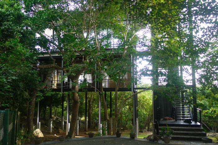 tree house between galle and unawatuna beach treehouses for rent in unawatuna southern province sri lanka