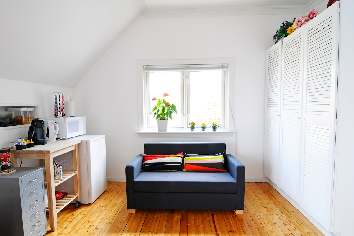 The sitting room has an extra sofa-bed and a coffemaker, waterboiler, microwave oven and fridge.