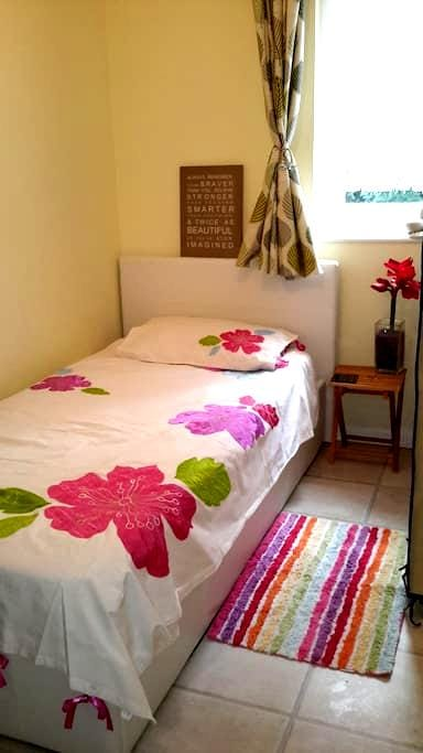 Private room close to Greenwich  and Blackheath. - Londen - Huis