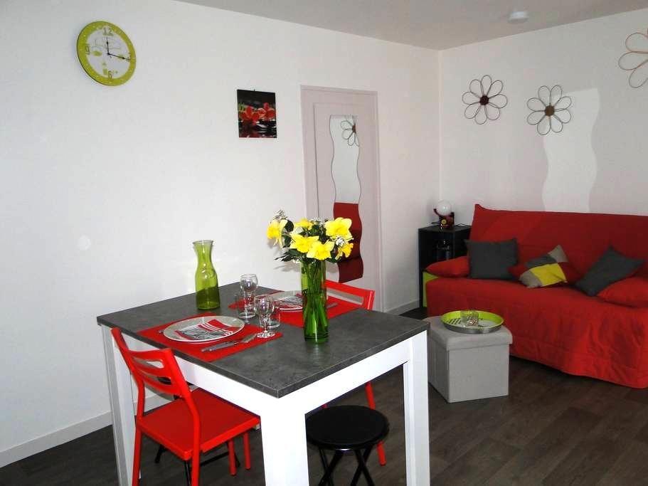 Entre Touraine et Sologne - Chémery - Apartmen
