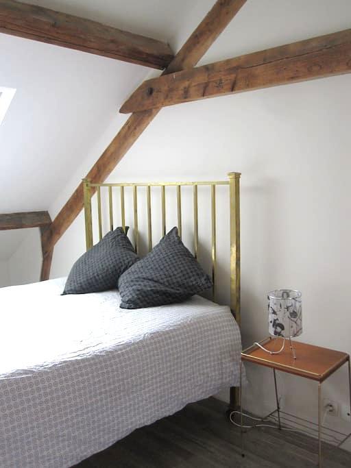 Jolie chambre 20m2 maison de charme - Rennes