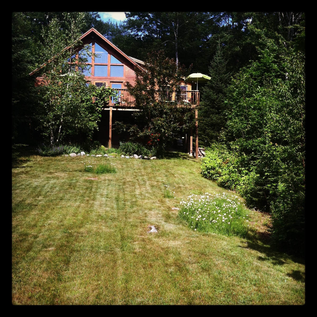 """7.5 Acres with the little cabin home we named """"Sparrowhawk"""""""