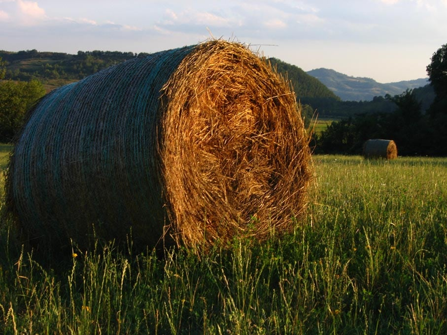 Nature and Culture in Green Umbria