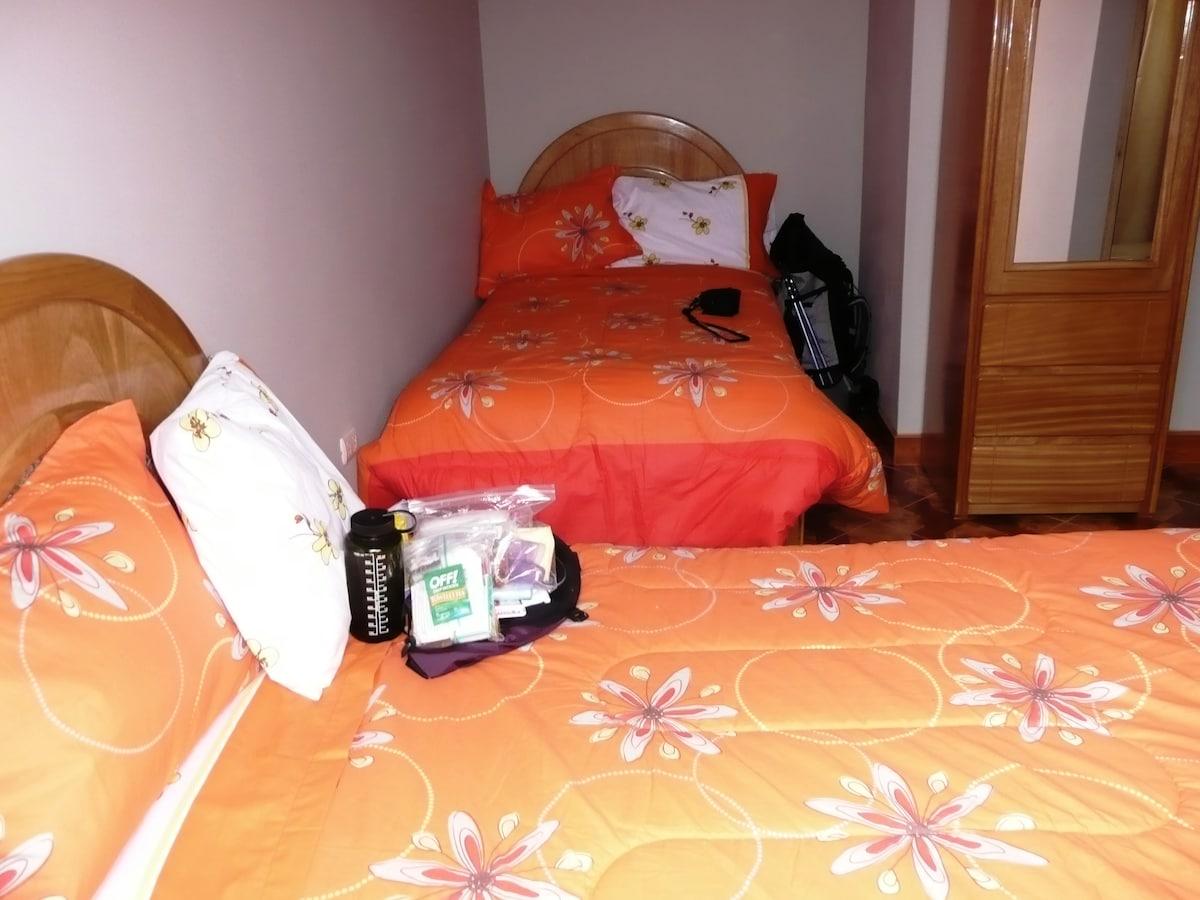 Twin Room / Habitacion con 2 camas
