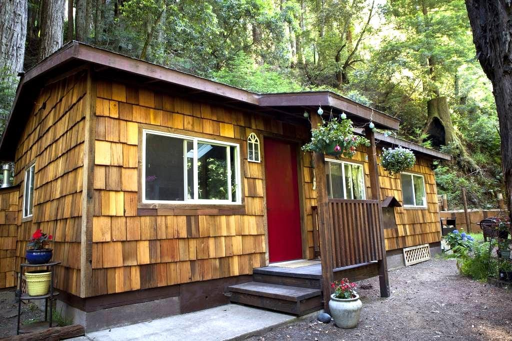 Serene Redwood Haven in Big Sur - Carmel-by-the-Sea