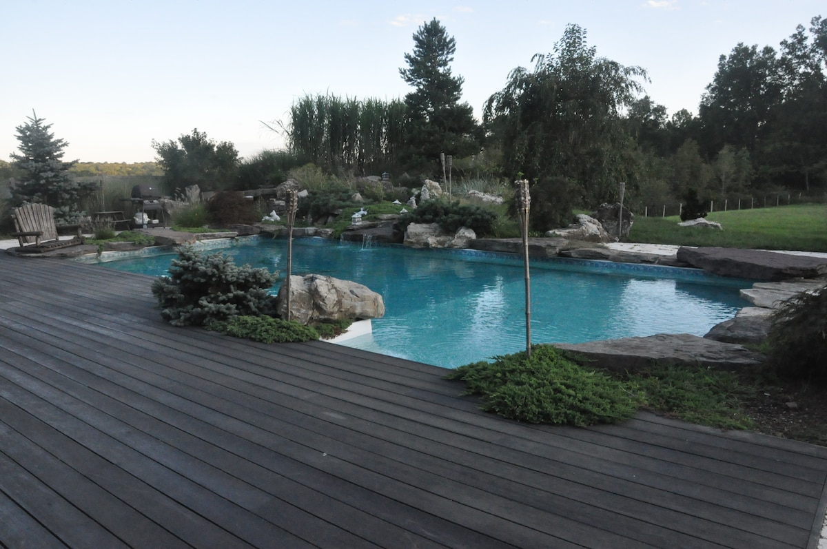 Pool with a Diving Rock & Waterfall