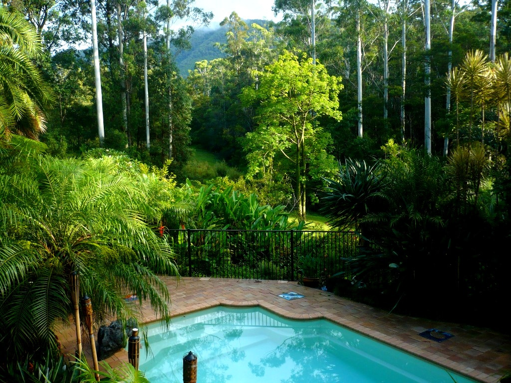 Surrounded by lust rainforest & Mt Yarrahpinni