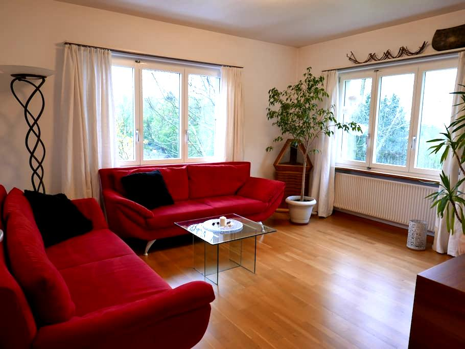 Hübsche 3 1/2 Zimmerwohnung nähe Basel - Himmelried - Apartament
