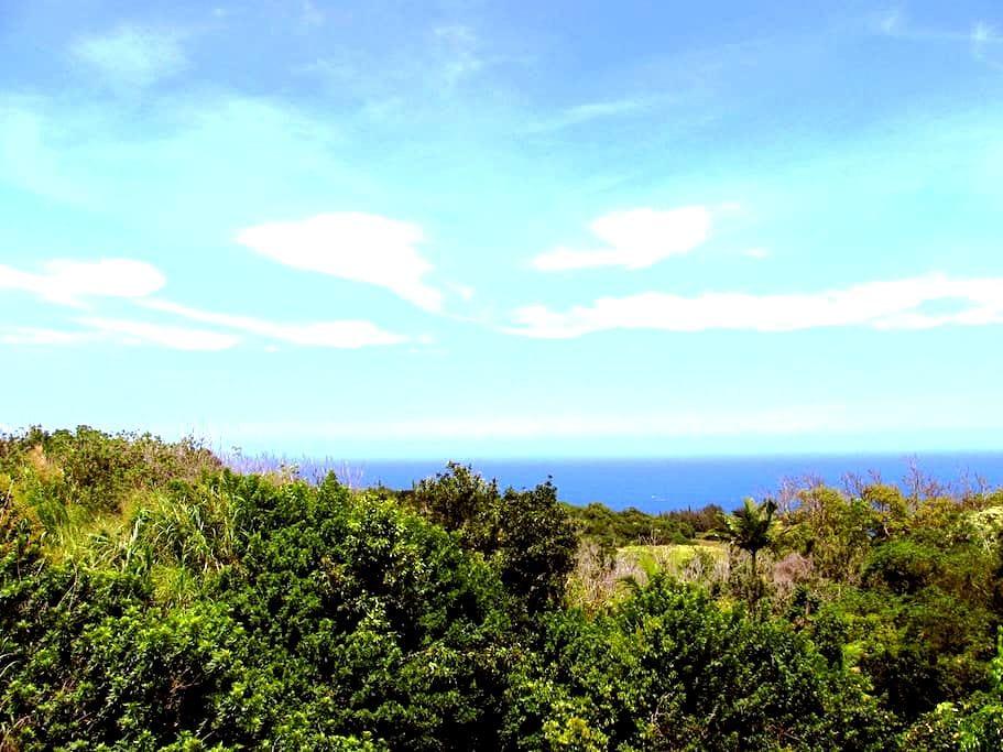 Luana Ola Blue Cottage Ocean View - Honokaa