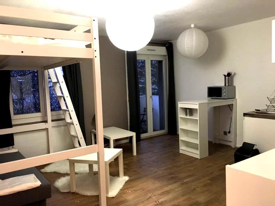 Studio centre ville à 5mn du tram - Mulhouse - Lejlighed