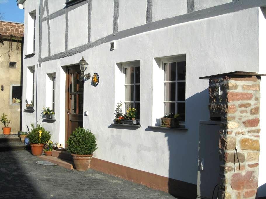 Große Fischergasse 9 - Seligenstadt - Wohnung