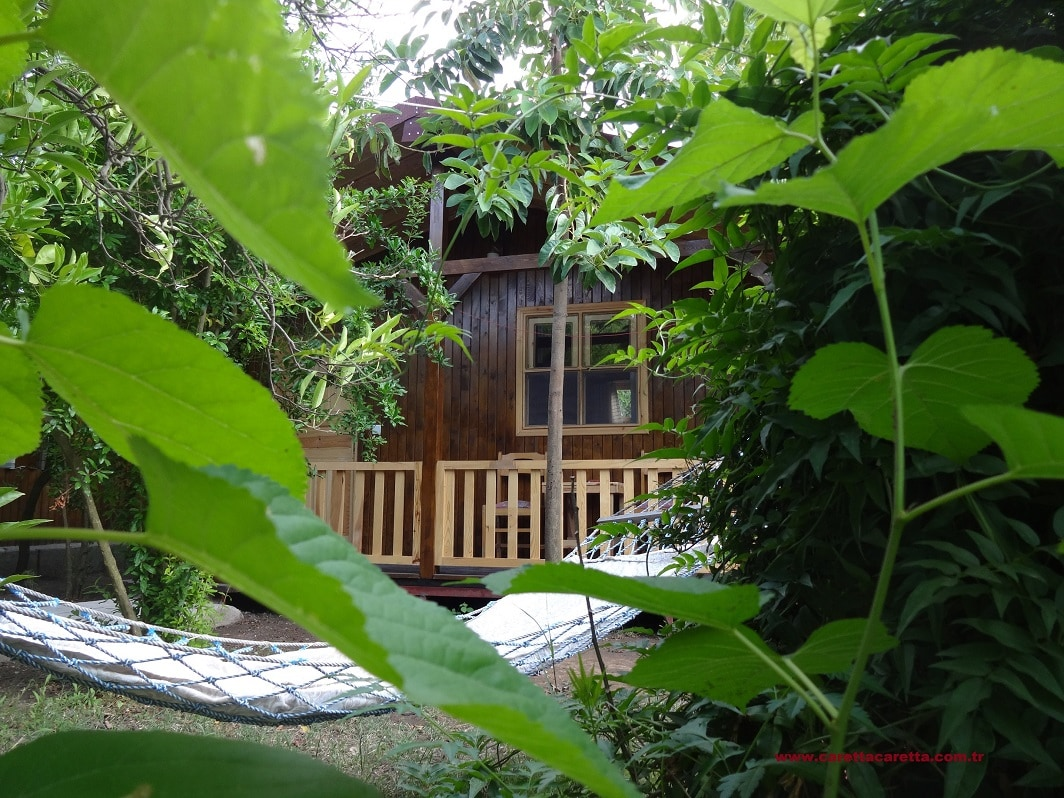 Cozy Bungalows on Organic Holiday