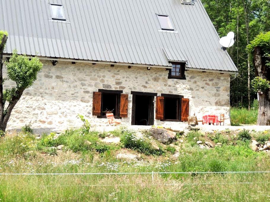 La ferme de La Pausetie au milieu de la forêt - Champs-sur-Tarentaine-Marchal