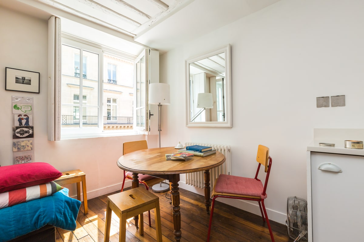 Bright apartment opp the Louvre
