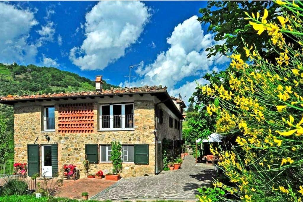 """Eco-Friendly Farmhouse """"Abbacca-là"""" - Lucca"""