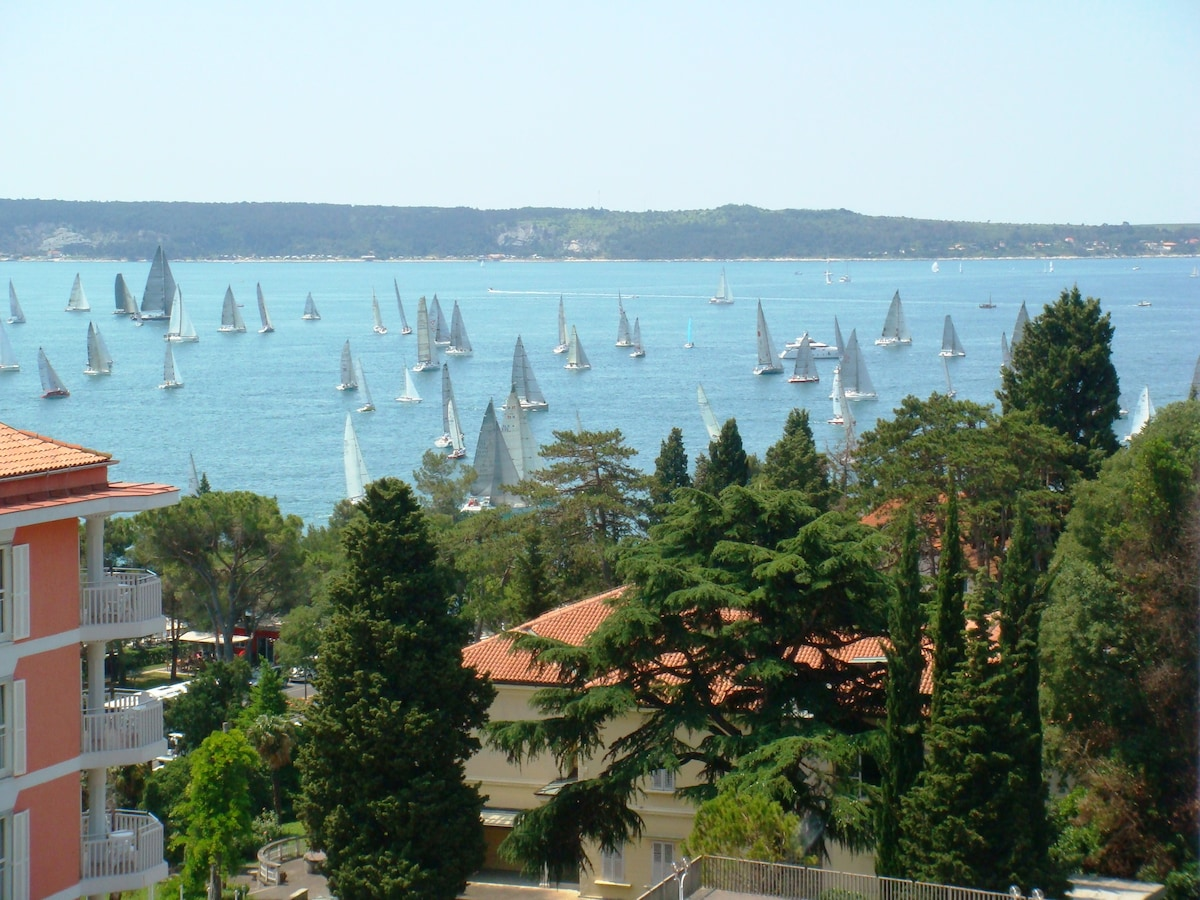 regatta from the terrace
