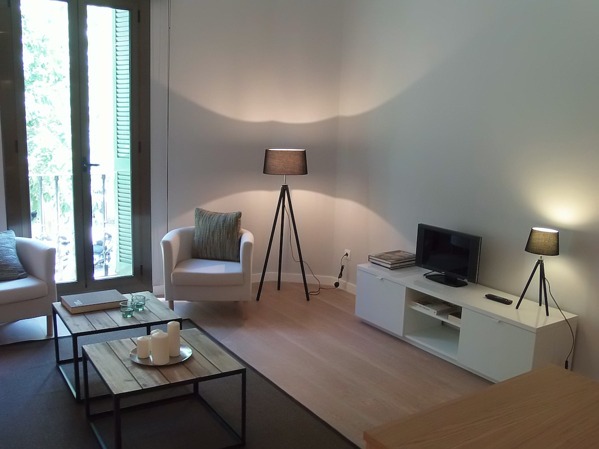 Design apartament at city center