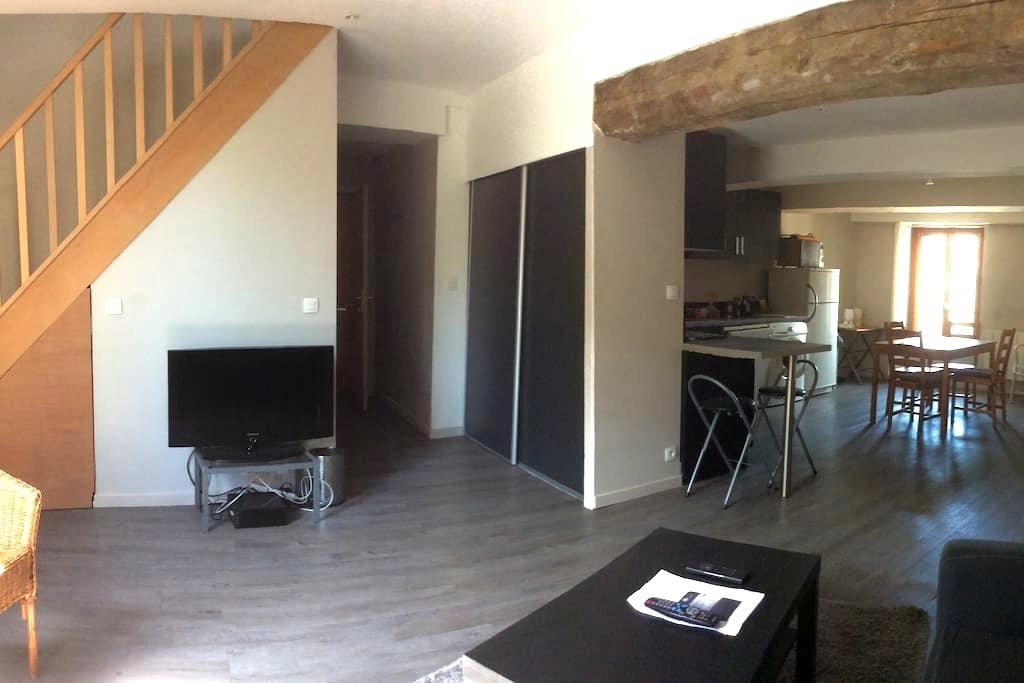 Duplex 2bedrooms flat, charming, pleasant overview - Oullins - Daire