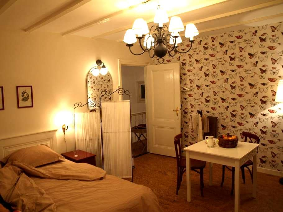 TheHagueMansion City&Beach Room A - L'Aia - Bed & Breakfast