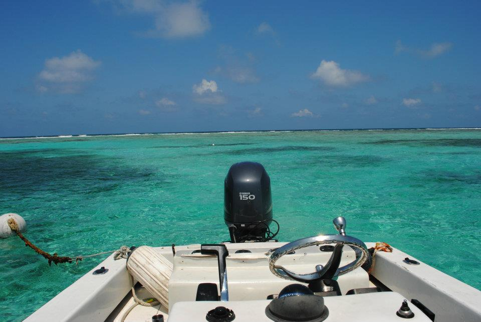 The 2nd longest barrier reef in the world is only a 5 minute boat ride away.