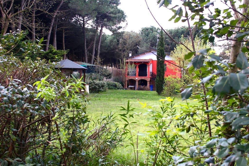 Casa Mare Zadina di Cesenatico - Cesenatico - Villa