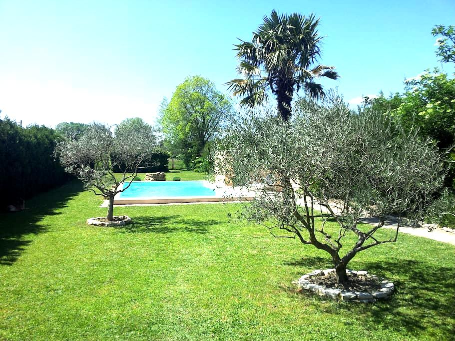 The olives trees, the pool, the sun - Sarrians - Appartamento