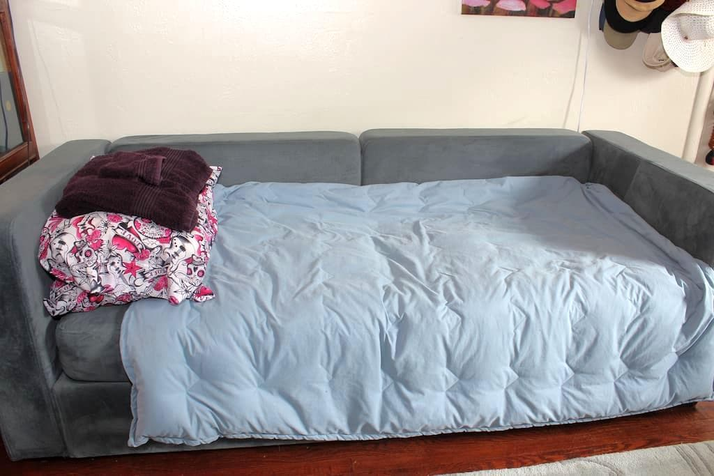 Cozy Couch in the Rose Garden - San Jose - Appartement