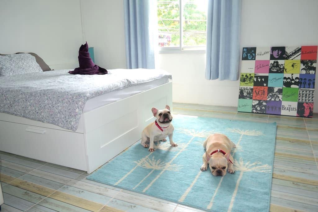 Double Room - Ko Chang - Adosado