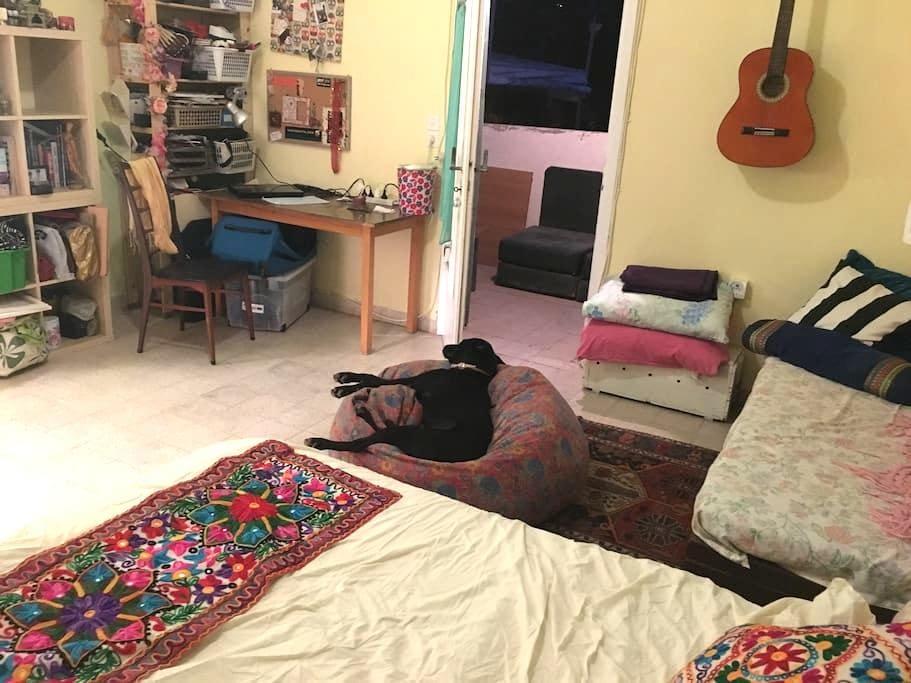 misi's place - Pardes Hanna-Karkur - Apartment