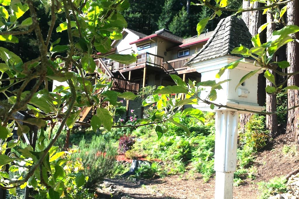 Mountain View Retreat near River - Guerneville - House