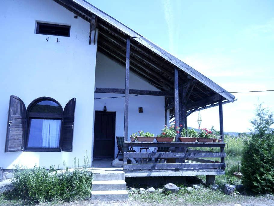 Authentic Countryside Romanian Home - Bughea de Jos - Dom