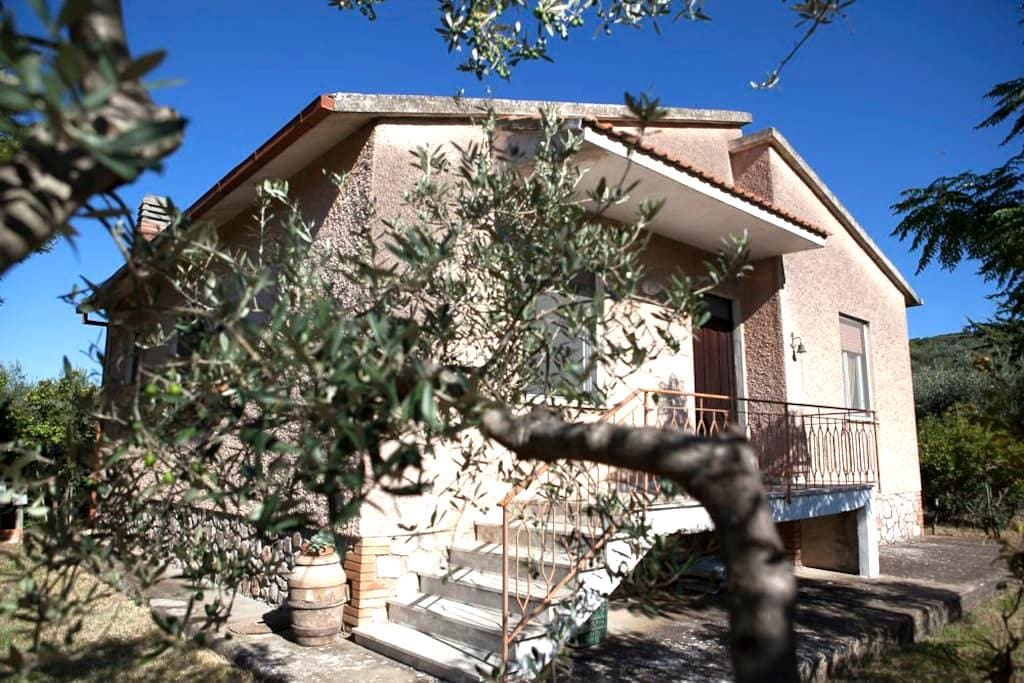 Family homestead in the olive grove - Grosseto - House
