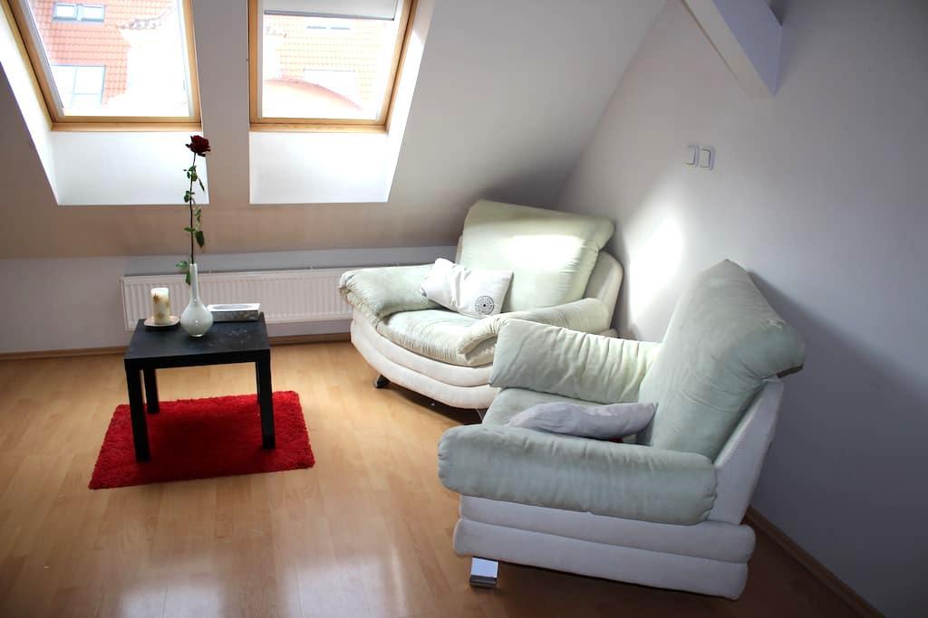 Studio Apartment in the centre - Prague