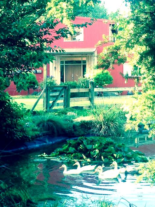 The Red Shed Homestay - Tauwhare, Cambridge - Bed & Breakfast
