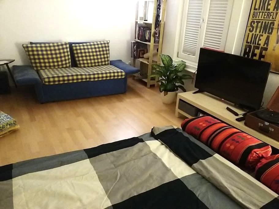 Big apartment in the city center - Dornbirn - Apartment