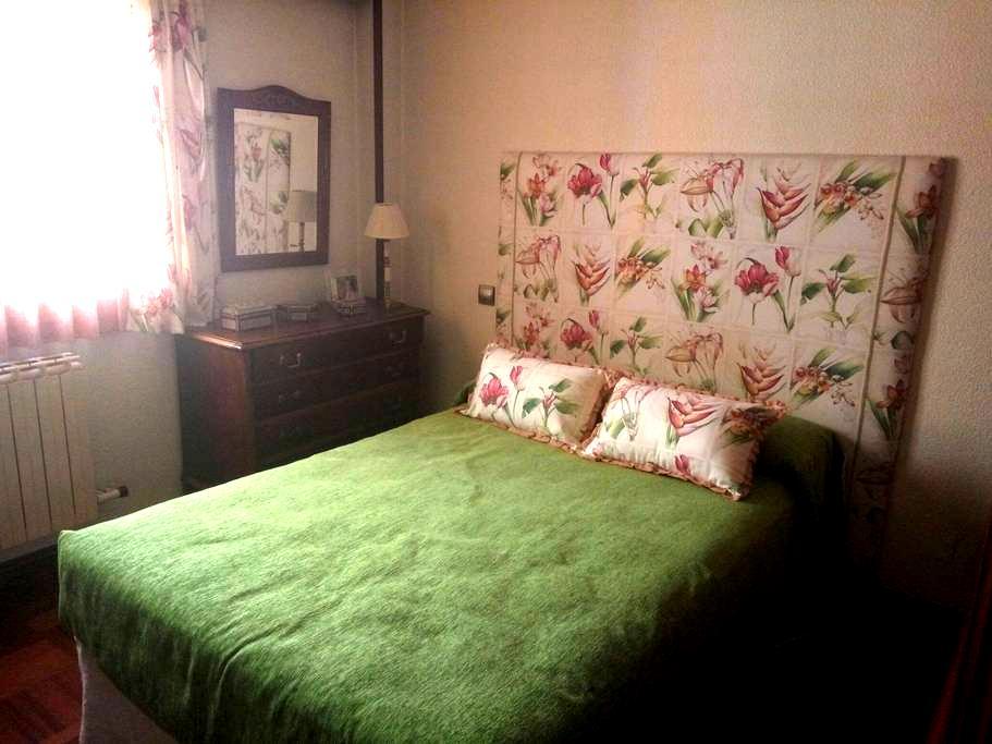 Gran habitación en piso centrico - Aranda de Duero