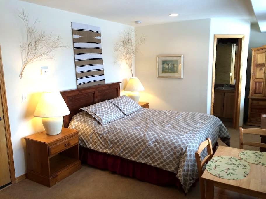 Studio Apartment on Willow Creek - Silverthorne - 아파트(콘도미니엄)