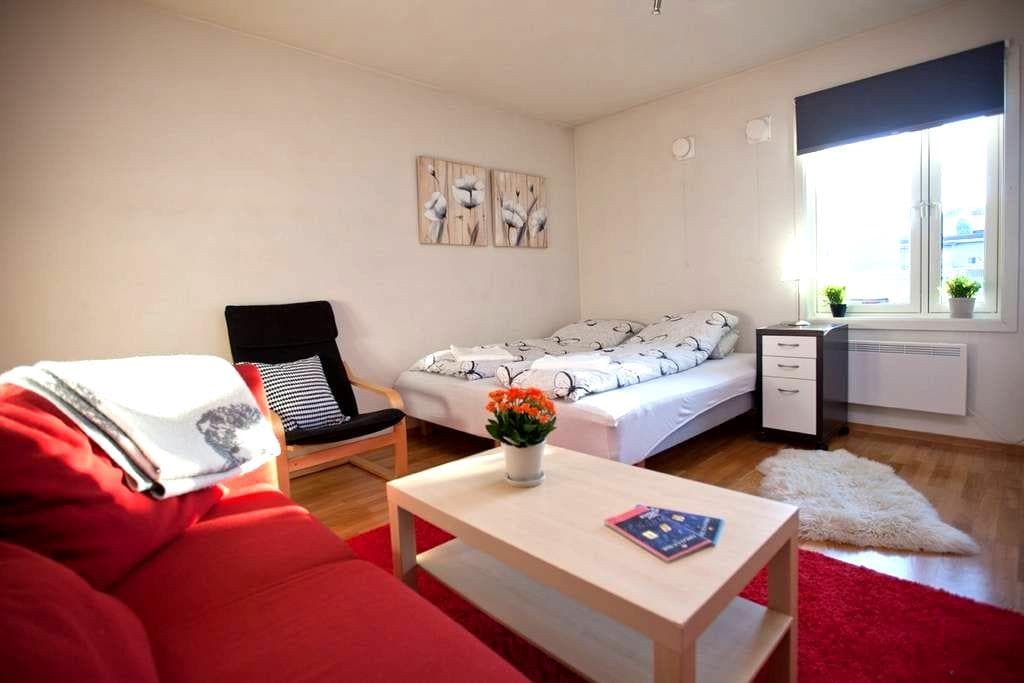 Great Room with Breakfast Close to Central Station - Oslo - Flat