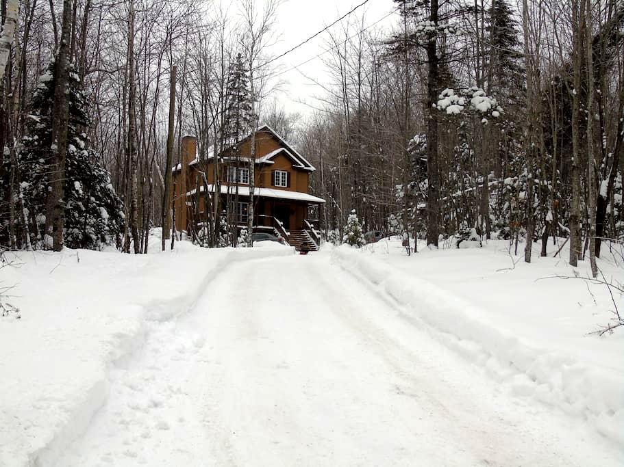 Maison dans la forêt - Saint-Hippolyte - House