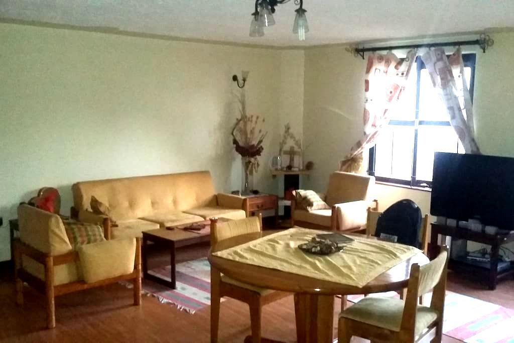 PROFESSIONAL CLASSY PRIVATE ROOMS - Nairobi - Apartment