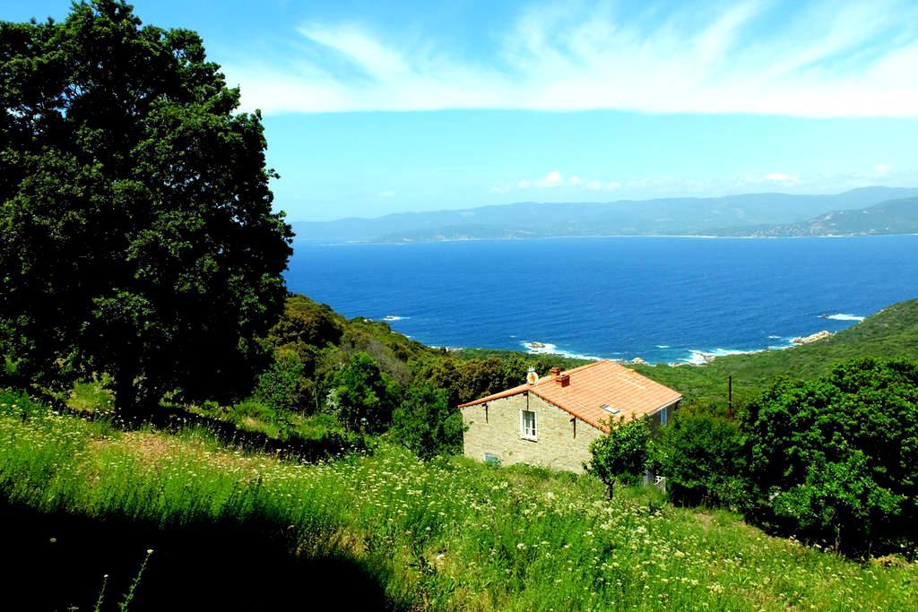 Costa - Belvédère-Campomoro