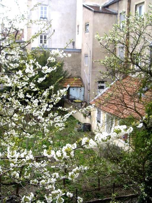 Cosy 45m² en centre ville - Дижон - Квартира