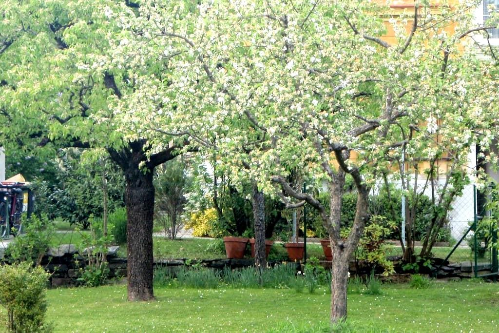 Central, quiet, green - sleeps 5! - Klagenfurt - Huis
