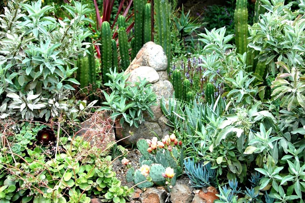 Magical Private Retreat-Tilden Park - Berkeley - Haus