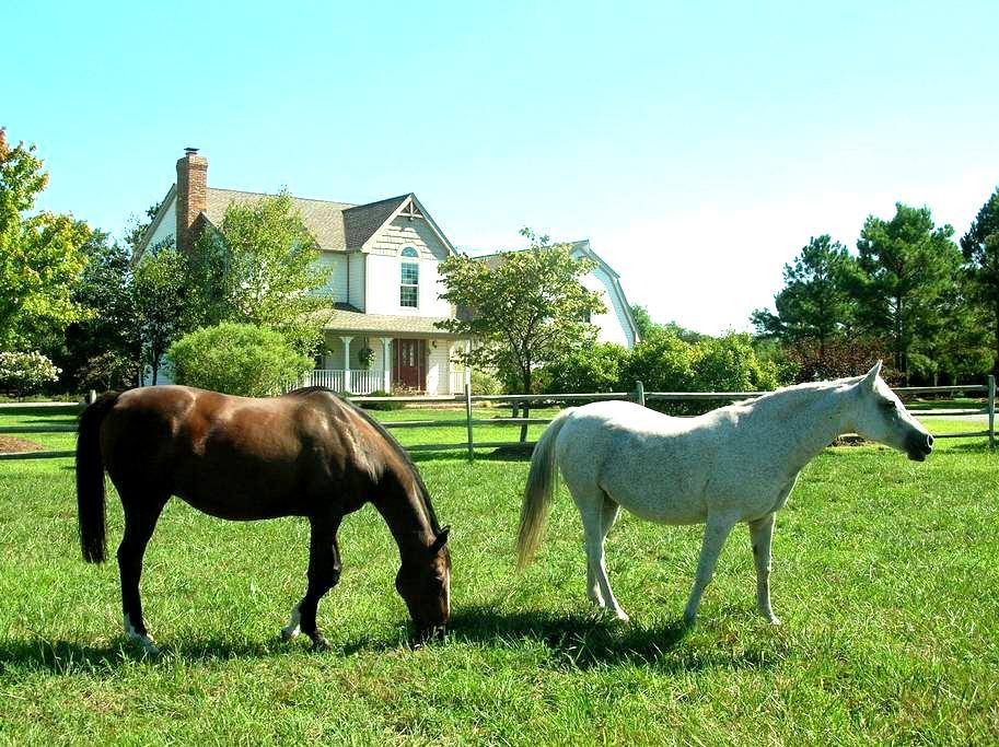 Waterfront Horse Farm Estate(working fireplace ) - McDaniel - 獨棟