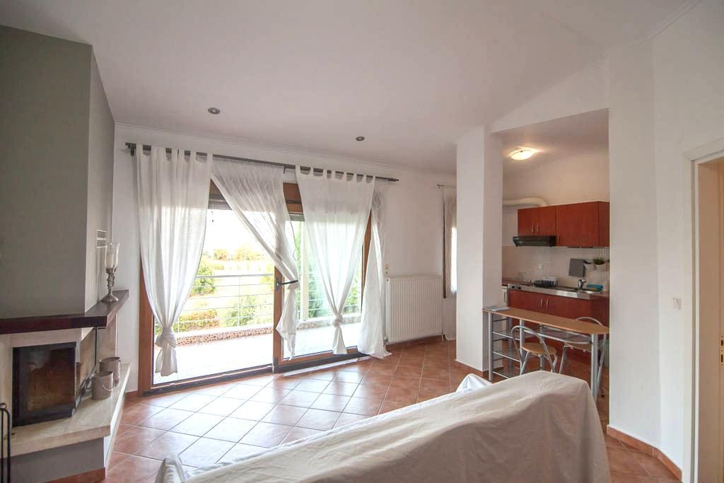 Olympus penthouse next to the beach,free parking - Litochoro