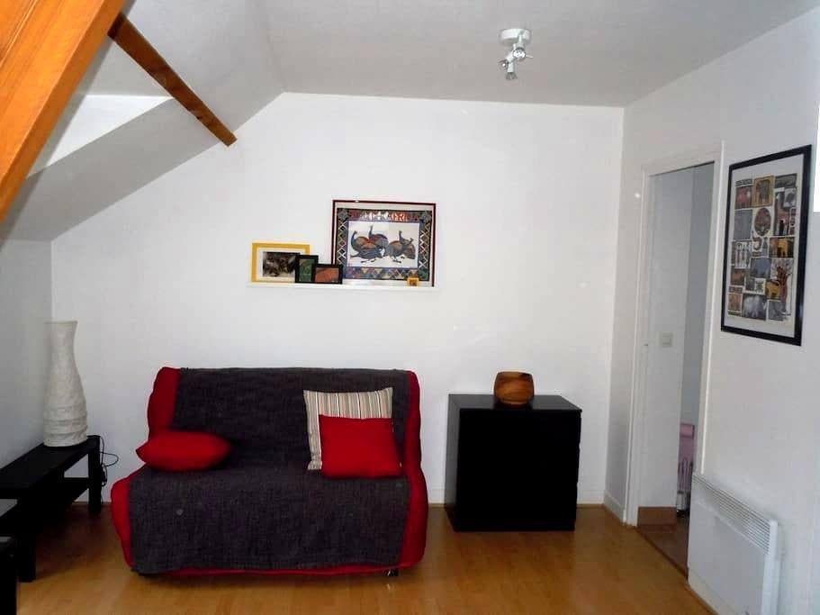 Studio flat completely remodeled - Saint-Germain-en-Laye - Apartment